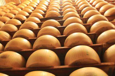 Parmigiano – Der beste Käse der Welt?