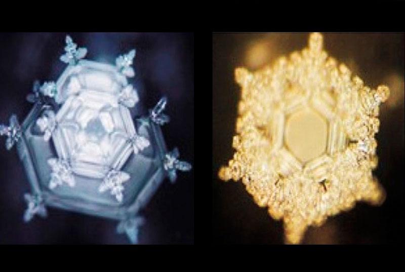 Goldener Schnitt und die Schönheit der Geometrie