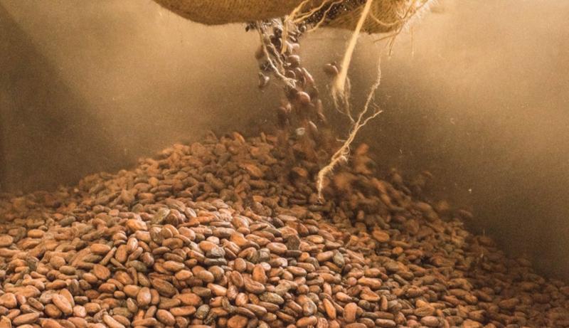 Feinste bean-to-bar Schokolade von Blanxart