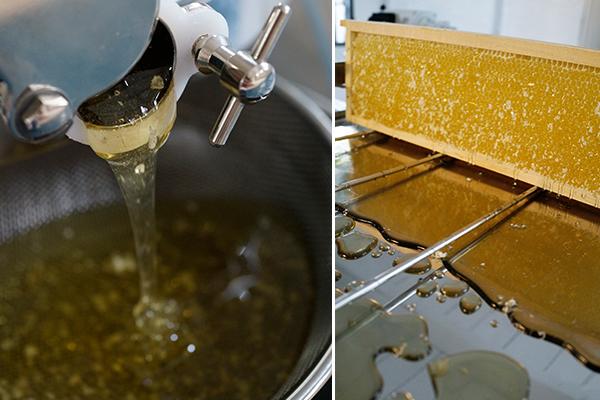 nachhaltige Honig-Produkte von Golden Girls Honey