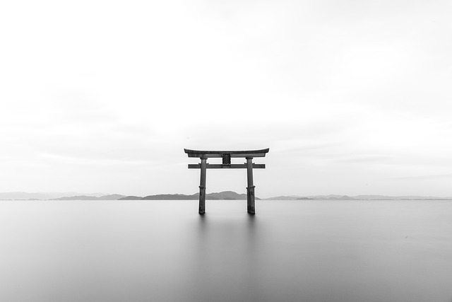 Japan-Tori