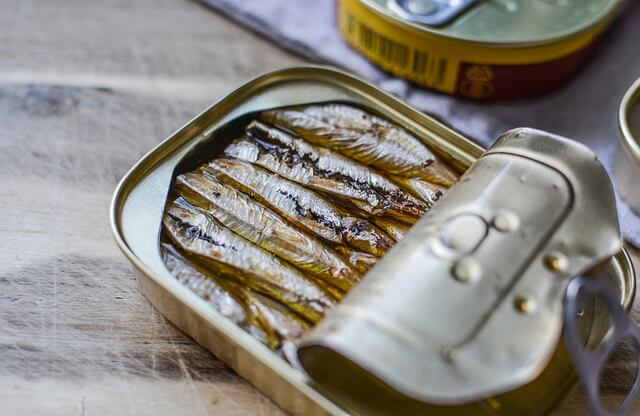 Sardinen-Futterfische