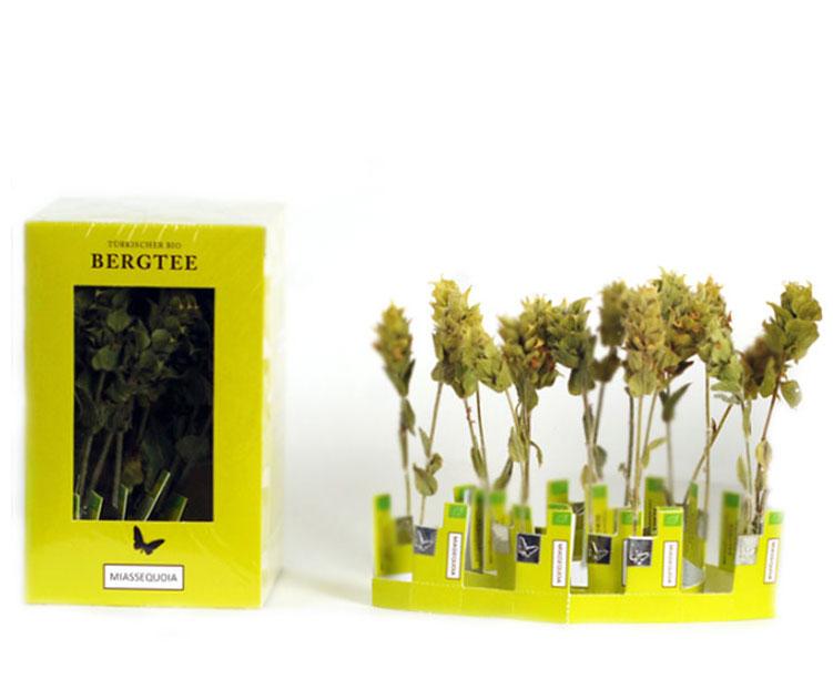 Tee aus ganzen Blütenrispen von Miassequoia