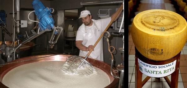 Parmesan-Herstellung