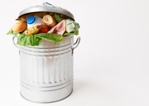 Wie können wir Lebensmittelverschwendung vermeiden? – Maßnahmen und Projekte